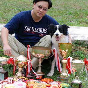21 Obedience Titles awarded by SKC!