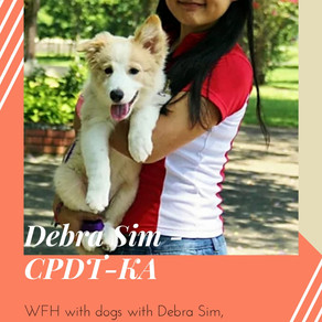 "DTS002 - ""WFH with dogs with Debra Sim, CPDT-KA"""