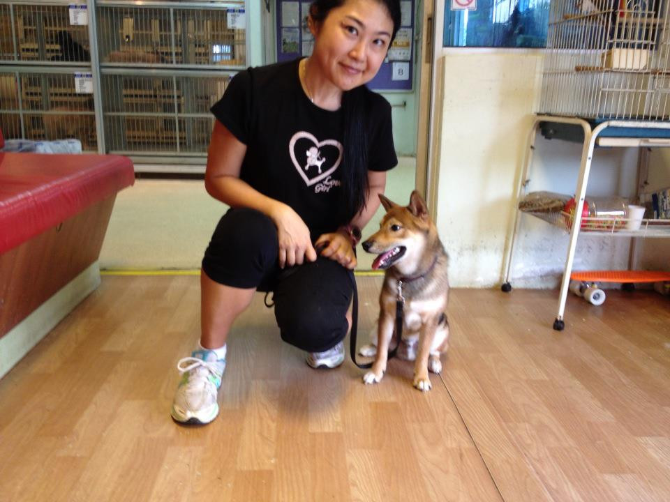 Dog Obedience Singapore