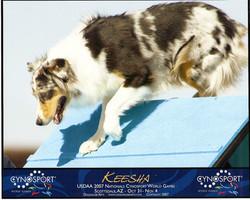 Keesha_Cynosport 2007.jpg