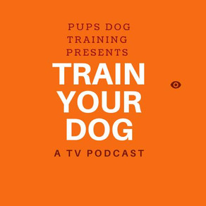 Train Your Dog Podcast