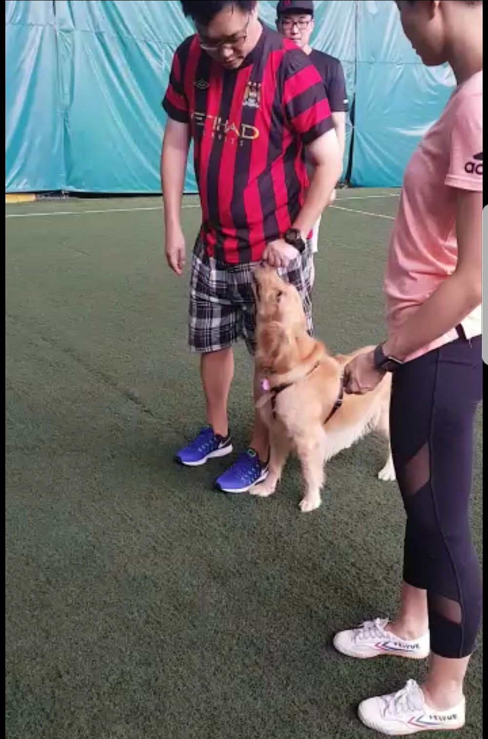 Dog Trainer Singapore