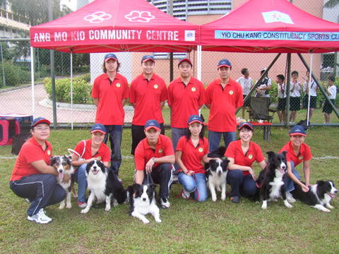 Original PUPS CrazyK9s Flyball Team