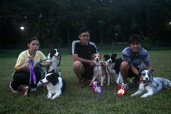 PUPS Agility Winners