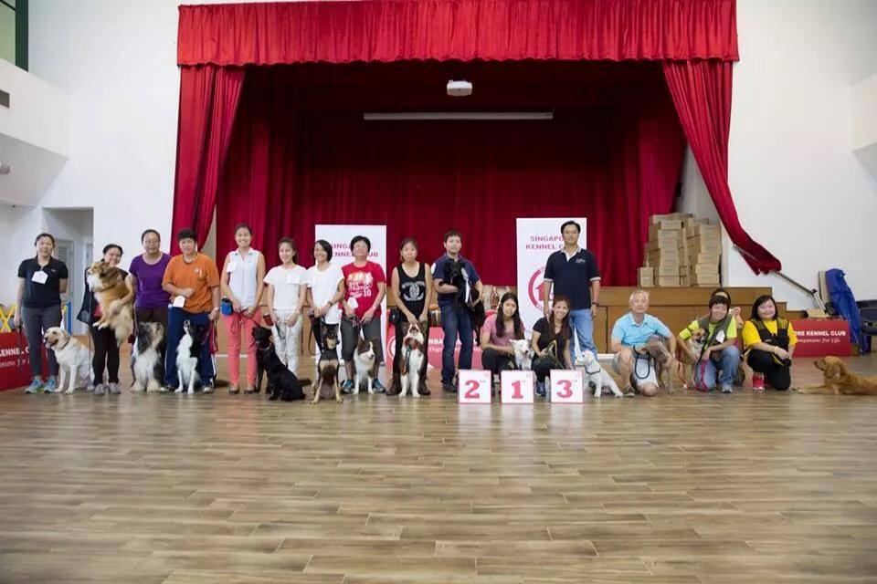 JFF Eventt, Dog Training Competition