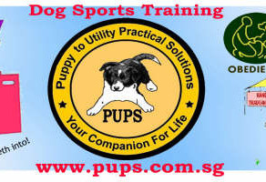 2017 PUPS Challenge Results