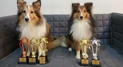 Miki, Tristan SKC Winning