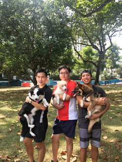 Katong Park Obedience Class