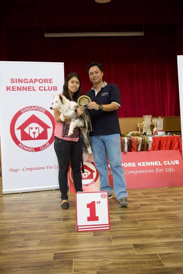 Sky & Charis Winner at JFF Event