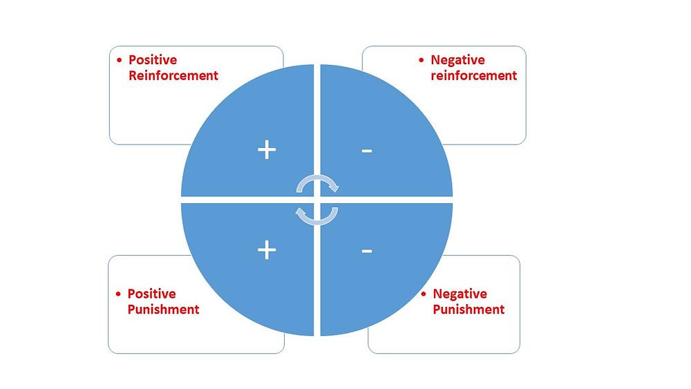 4 Quadrant of Reinforcement Training