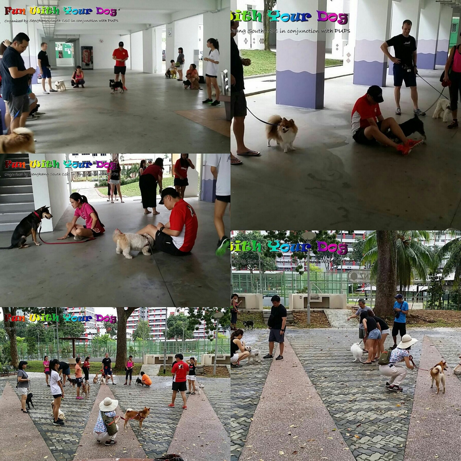 Obedience Seminar at SengKang CSC