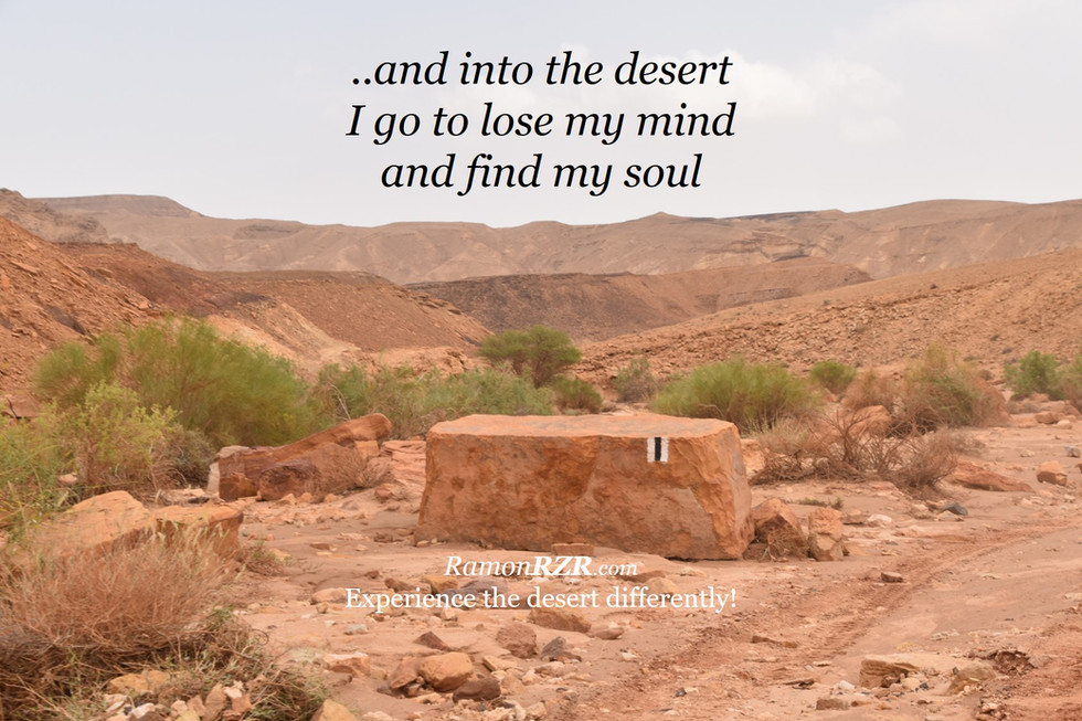 ..and into the desert I go to lose my mind and find my soul