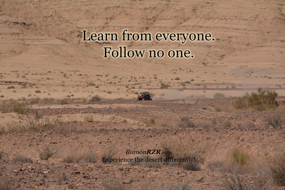Learn from everyone. Follow no one.