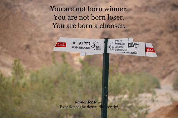You are not born winner. You are not born loser. You are born a chooser.