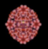 floressmatru.png
