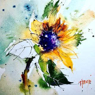 """""""Sunflower on the Cusp"""""""