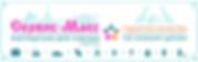 Сервис-Макс_в4 — маленькая 2020.png