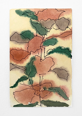 Plant, 2020. Watercolor and ink on paper, 7.5 x 5 in (19.05 x 12.7 cm)