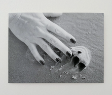 Untitled (Beetle/Hand), 2020. Silver gelatin print, 7.5 x 10.2 in (19 x 26 cm). Ed. 5/5