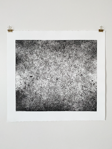 Just be prepared (backyard, birds, Southtown), 2017. Soft ground etching, intaglio, 22.5 x 23.7 in (57.1 x 60.2 cm). Ed. 5/10