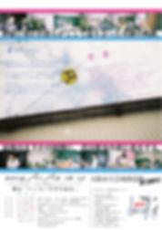Flyer11152L.JPG