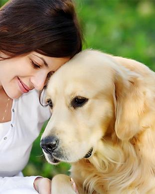 animal-communication.png