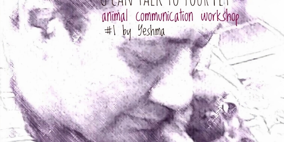 """Yeshma's Workshop #1: """"You can communicate with your pet"""" in KL"""