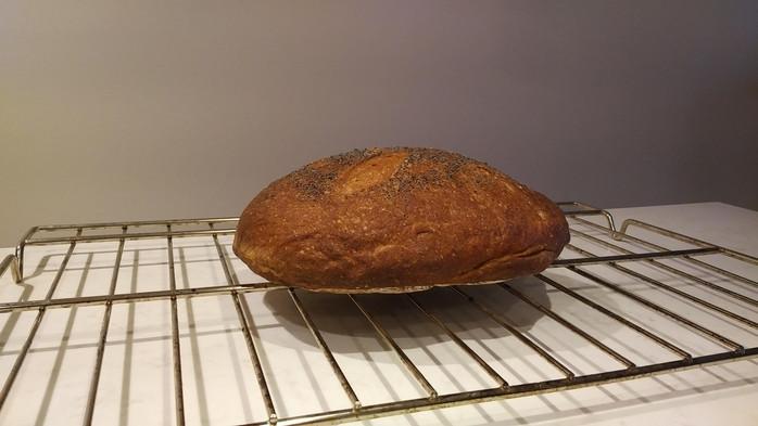 Amaranth Sourdough Loaf Part Two