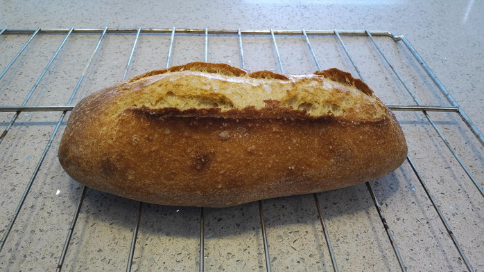 Salty Einkorn Loaf Part 2