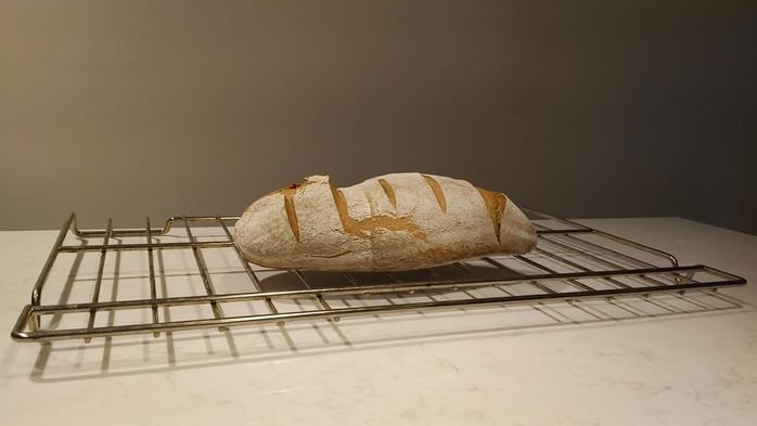 Sour Spelt Loaf Part II