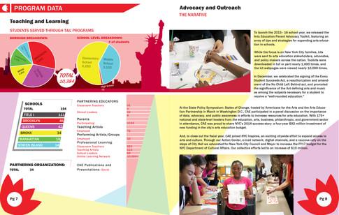 CAE Annual Report 1