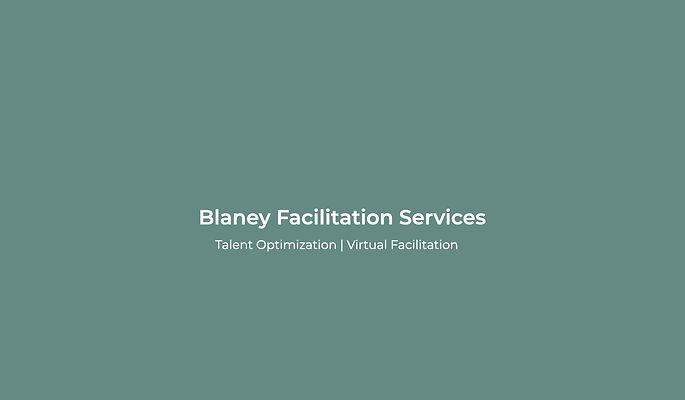 Sue Blaney describing Blaney Facilitation Services