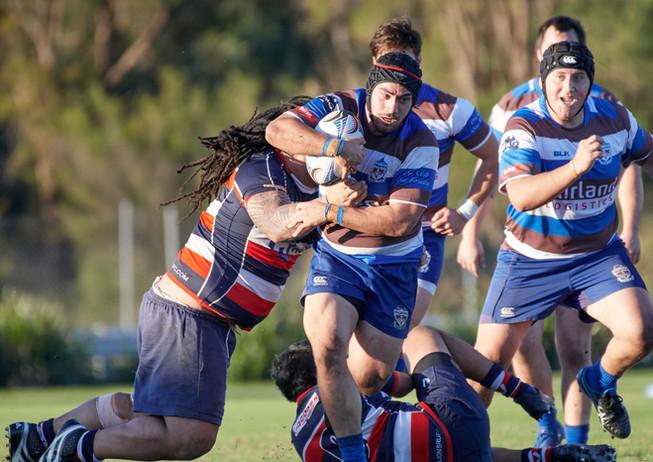 Palmyra Rugby, Premier Grade-14.jpg