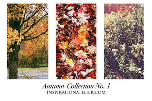 2020 Autumn Collection No. 1 - digital images