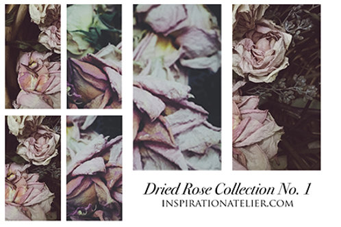 Inspiration Atelier Dried Roses - Dark Collection No. 1