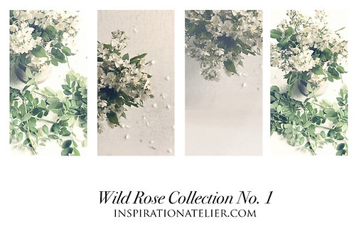Wild Rose - Collection No. 1