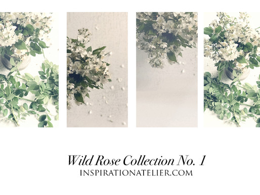 wild rose collection now available