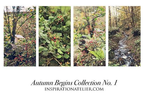 Autumn Begins - Collection No. 1