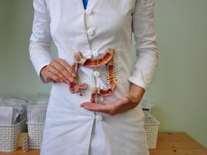 'Het Slimme Darmen-dieet'