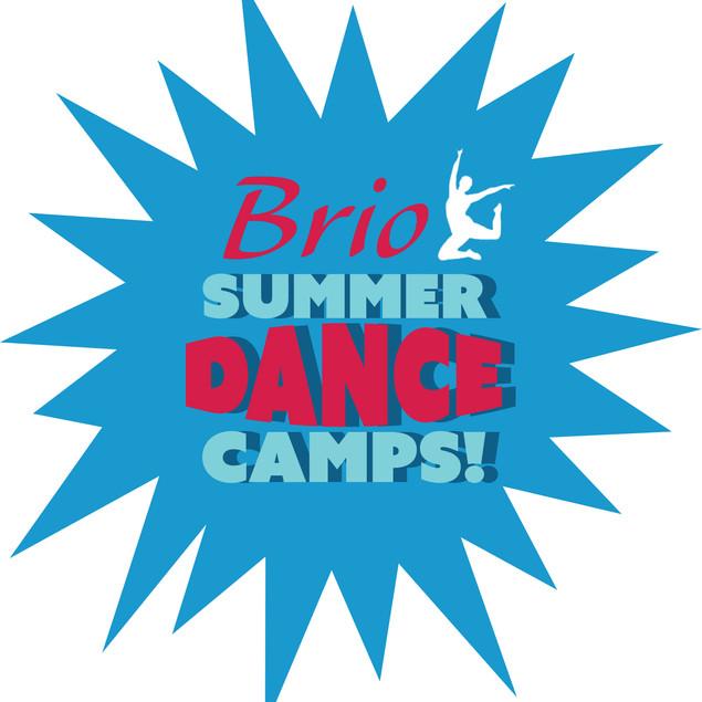 Brio Summer Camp Logo