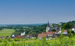 Blick auf Laubenheim