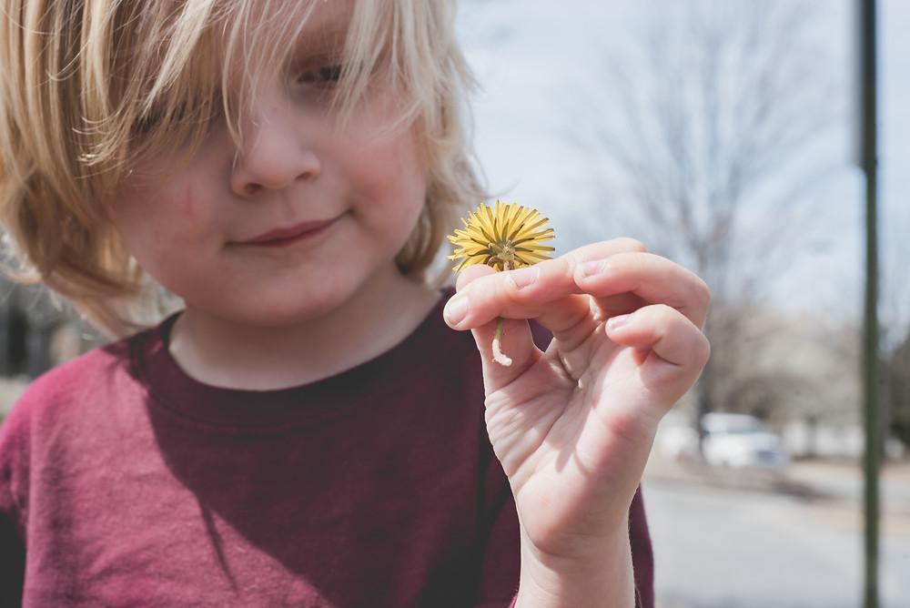 A boy full of love holding a dandelion