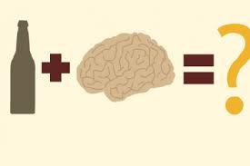 Nosso cérebro muda quando ingerimos álcool por longos períodos?