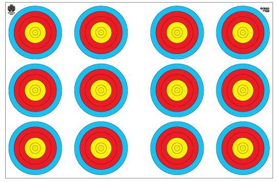 Fivics Indoor 12cm (3X20W) Target Face