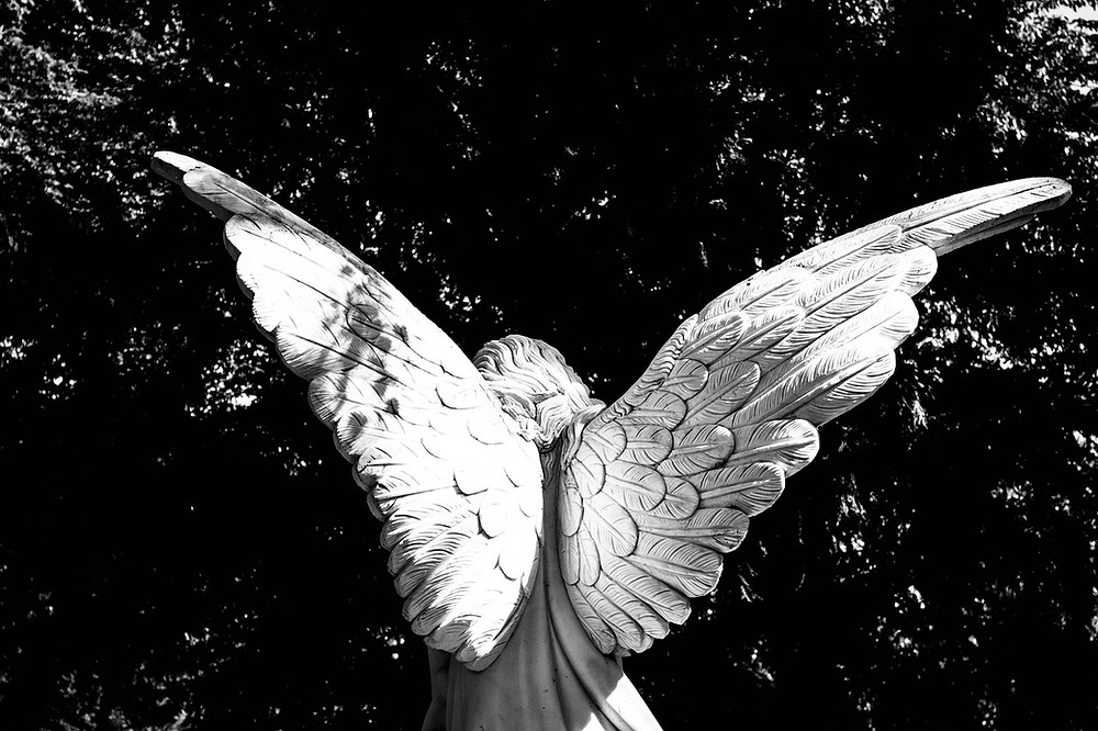 Black and White image of Angel Wings