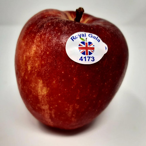 English Royal Gala Apple