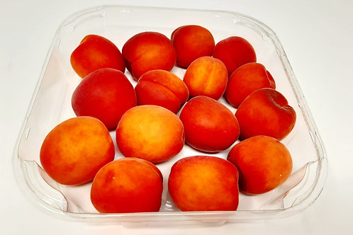 Apricot (individual)