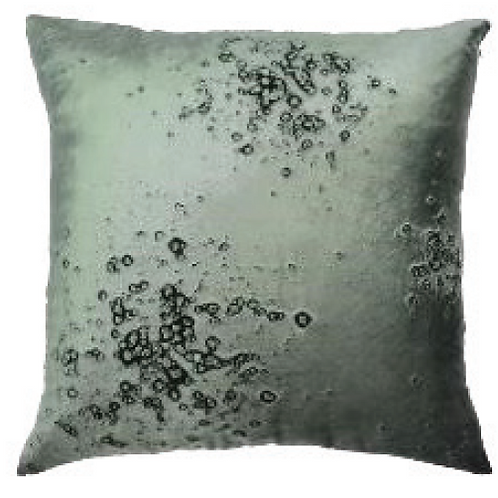 Aviva Stanoff Mineral on Cinder Cushion