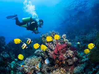 corfuyachts-scuba-diving-experience-in-c