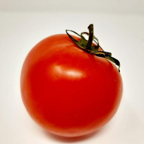 Large Salad Tomato